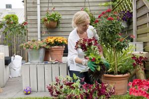Lavorare con i fiori