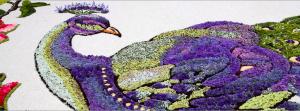 Pietra Ligure in fiore (Savona) @ Pietra Ligure (SV) | Pietra Ligure | Liguria | Italia