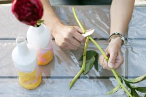 Strumenti e materiali del fiorista