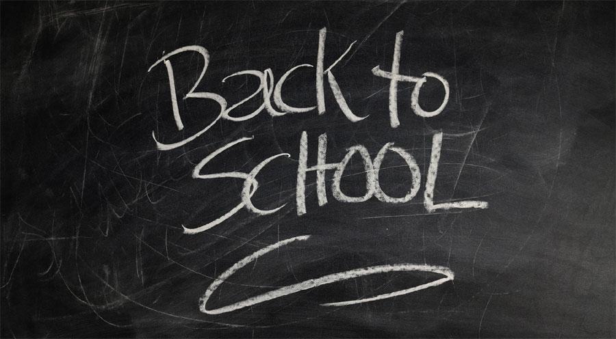 Professione fiorista: come aggiornarsi dopo la scuola