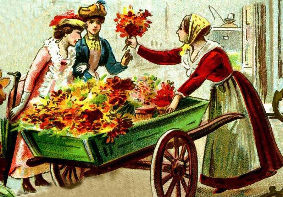 Vendita ambulante di fiori piante bulbi semi e fertilizzanti