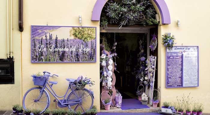 Aprire un negozio di fiori e piante Fioreria