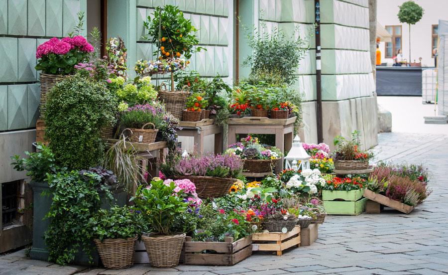 Aprire un corner di fiori al supermercato