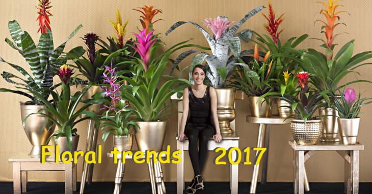 Trend floreali 2017 Comporre fiori e Piante da giardino