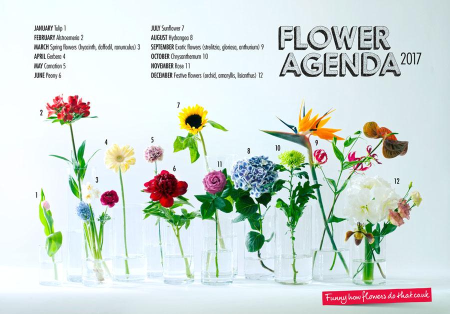 flower_agenda_2017b