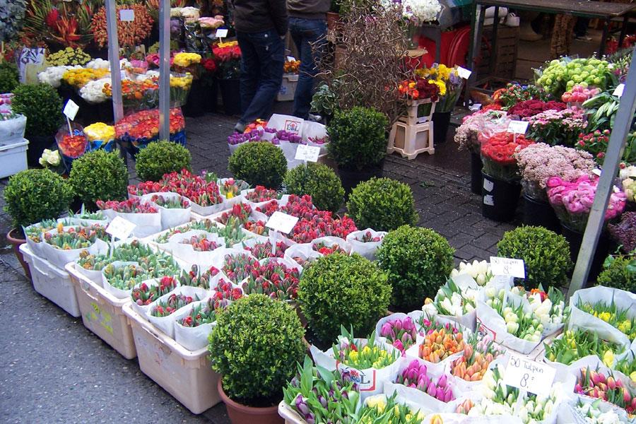 Il mercato mondiale dei fiori recisi