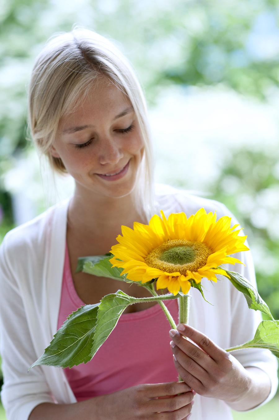 Come evitare danni agli steli dei fiori recisi