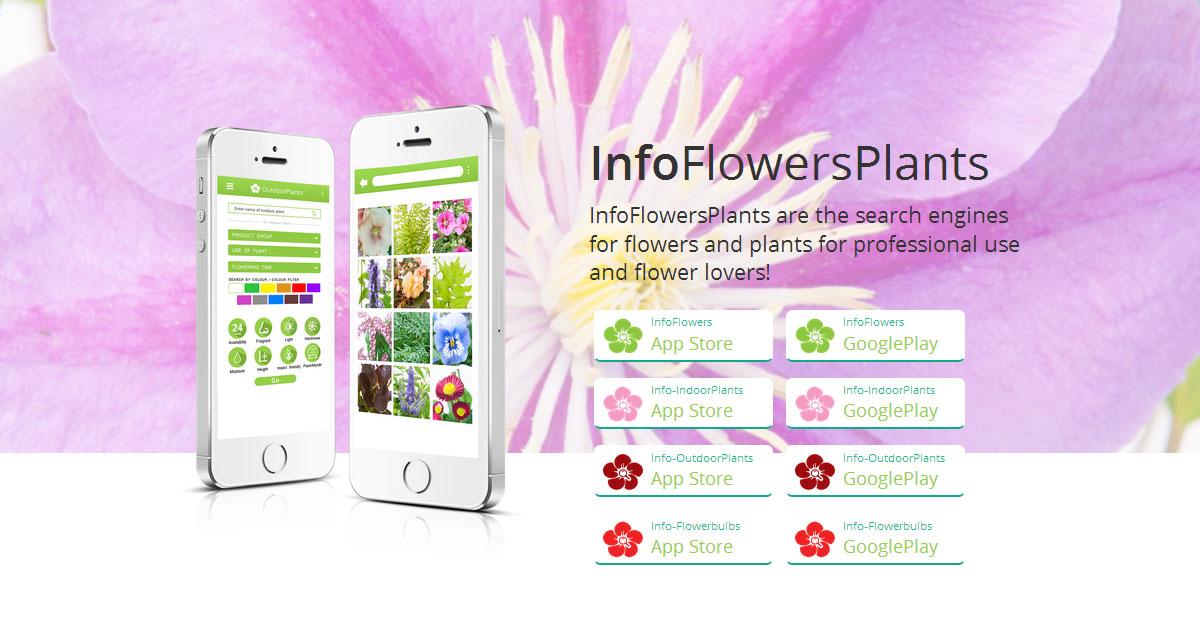App Fiori Bulbi Piante da esterni e interni InfoFlowersPlants