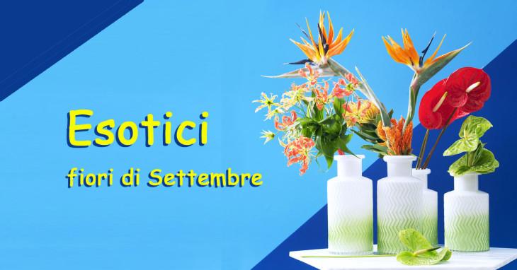 Esotici i fiori del mese di Settembre