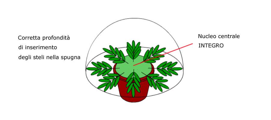 Comporre con i fiori nella spugna