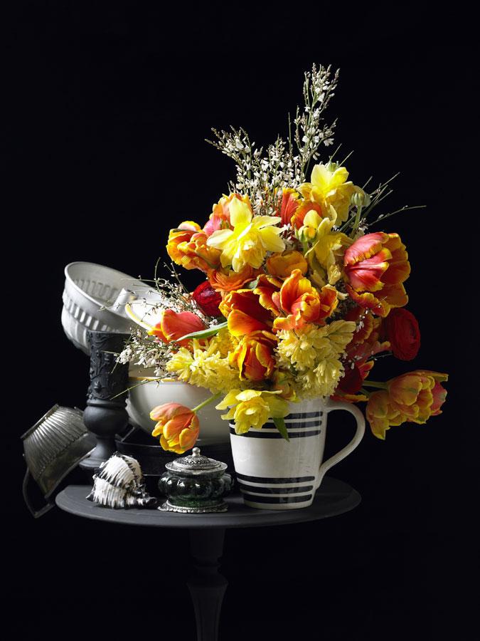Tulipano fiore del freddo per il mese di Gennaio