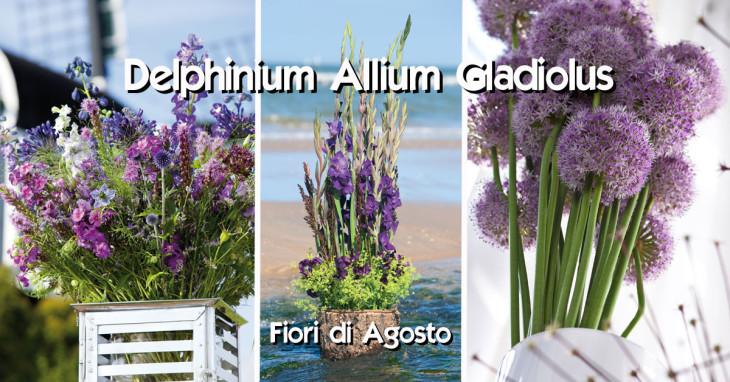 Delphinium Allium Gladiolus fiori di Agosto